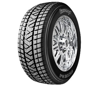 Gripmax Stature MS 255/55 R19