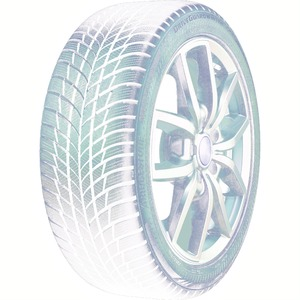 Bridgestone DriveGuard Winter 205/55 R16